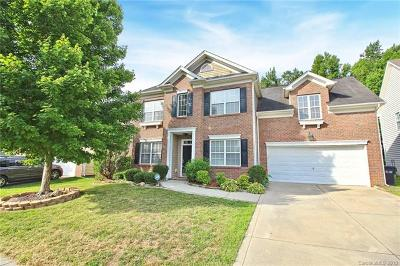 Charlotte Single Family Home For Sale: 13906 Daltrey Lane
