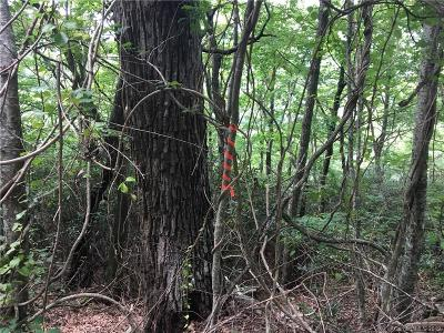Buncombe County Residential Lots & Land For Sale: Chestnut Top Circle #28 &