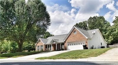 Mint Hill Single Family Home For Sale: 9228 Plashet Lane