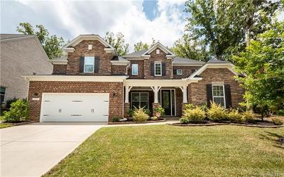 Waxhaw Single Family Home For Sale: 8608 Fairgreen Avenue