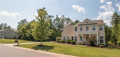 Lake Wylie Single Family Home For Sale: 4749 Summerside Drive