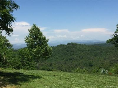 Henderson County Residential Lots & Land For Sale: Lot 1 Tomahawk Trail #1
