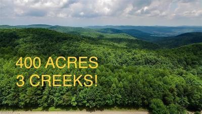 Residential Lots & Land For Sale: Vannoy Ridge Ridge