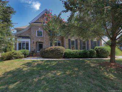 Mooresville Single Family Home For Sale: 173 E Warfield Drive