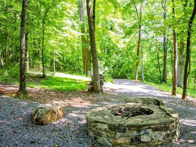 Catawba Residential Lots & Land For Sale: 1266 Ron Whicker Drive #99