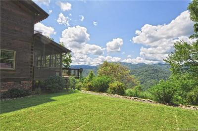 Single Family Home For Sale: 230 Farmer Mountain Road