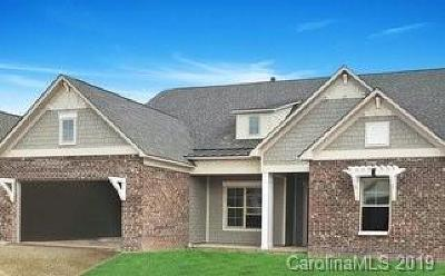 Amber Meadows Single Family Home For Sale: 2048 Rocky Hollow Drive