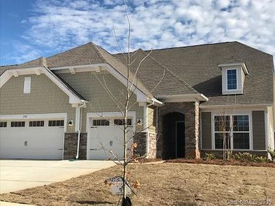 Charlotte Single Family Home For Sale: 16611 Cozy Cove Road #46