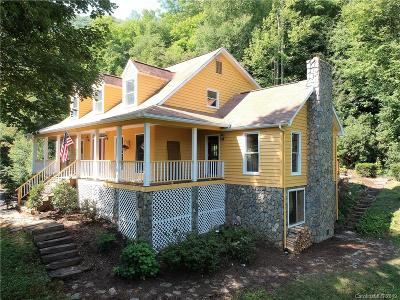 Haywood County Single Family Home For Sale: 194 Ramp Patch Lane
