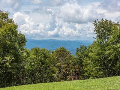 Henderson County Residential Lots & Land Under Contract-Show: 487 Grand Highlands Drive #93