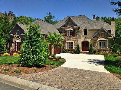 Waxhaw Single Family Home For Sale: 8106 Skye Knoll Drive