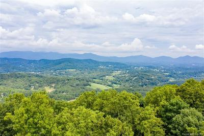 Buncombe County Residential Lots & Land For Sale: 96 Chads Lane