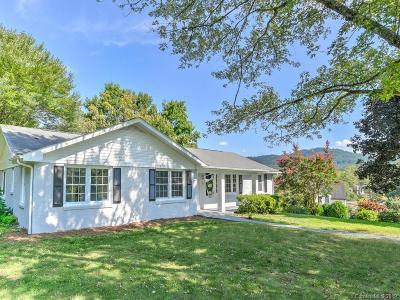 Asheville Single Family Home For Sale: 39 Crabapple Lane