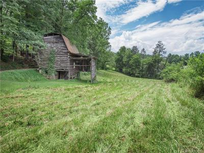 Buncombe County Residential Lots & Land For Sale: Jones Road
