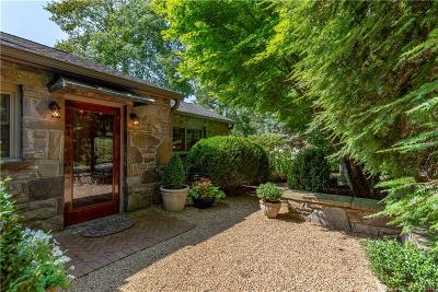 Asheville Single Family Home For Sale: 825 Town Mountain Road