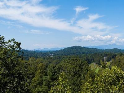 Buncombe County Residential Lots & Land For Sale: 191 Elk Mountain Road