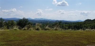 Buncombe County Residential Lots & Land For Sale: 169 Waightstill Drive