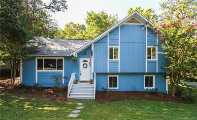 Tega Cay Single Family Home For Sale: 1055 Palmyra Drive