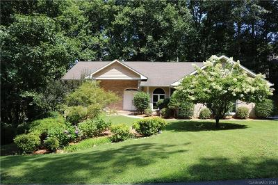 Hendersonville Single Family Home For Sale: 6 Squirrel Trail Court