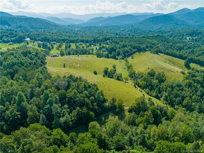 Buncombe County Residential Lots & Land For Sale: 99999 Bartlett Road