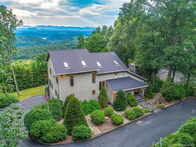 Asheville Single Family Home For Sale: 46 Running Ridge Road