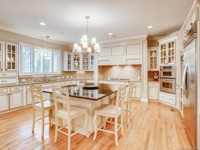 Ballantyne Country Club Single Family Home For Sale: 14605 Brick Church Court