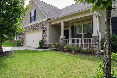 Charlotte Single Family Home For Sale: 16411 McKee Ridge Drive
