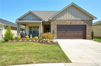 Denver Single Family Home For Sale: 4783 Looking Glass Trail