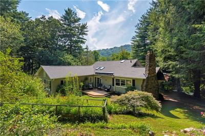 Asheville Single Family Home For Sale: 335 Chunns Cove Road