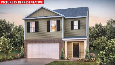 Cabarrus County Single Family Home For Sale: 3997 Potts Grove Place #243