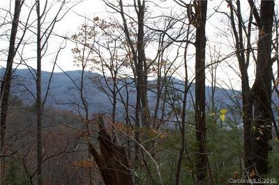 Buncombe County Residential Lots & Land For Sale: 10 Nellie Lane