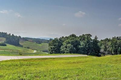 Buncombe County Residential Lots & Land For Sale: 172 Israel Road #51