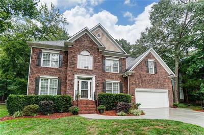 Huntersville Single Family Home For Sale: 8920 Park Grove Street