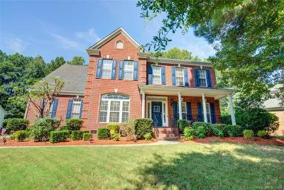 Gaston County Single Family Home For Sale: 404 Stonewater Bay Lane