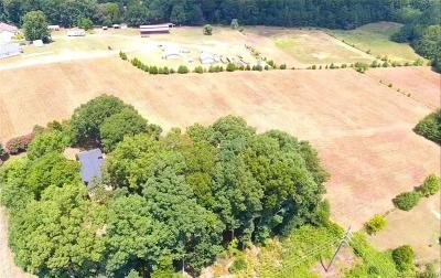Gaston County Single Family Home For Sale: 1704 Rhyne Road