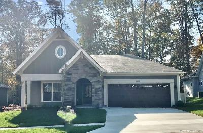 Cabarrus County Single Family Home For Sale: 3895 Zemosa Lane #36