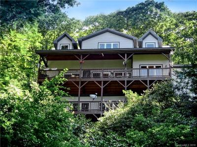 Haywood County Single Family Home For Sale: 254 Picnic Gap Road
