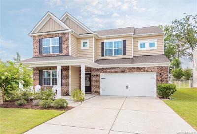 Waxhaw Single Family Home For Sale: 1001 Wainscott Drive