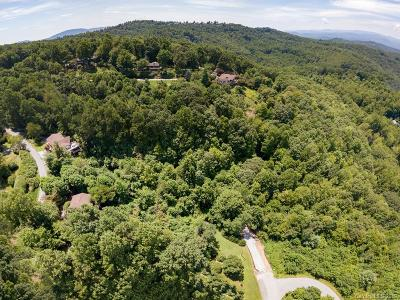 Henderson County Residential Lots & Land For Sale: Skyway Drive