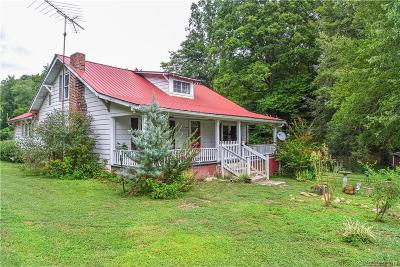McDowell County Single Family Home For Sale: 46 Mashburn Branch Road