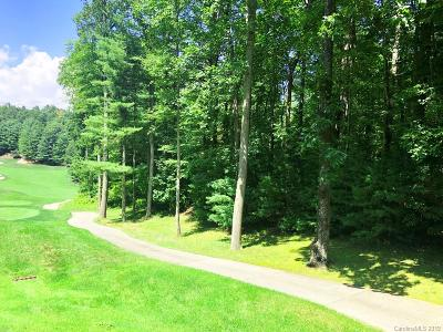 Henderson County Residential Lots & Land For Sale: 3 Cooper Cove South #53B