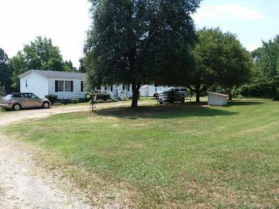 Maiden Single Family Home For Sale: 3354 Buffalo Shoals Road