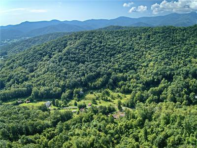 Buncombe County Residential Lots & Land For Sale: Warren Creek Road