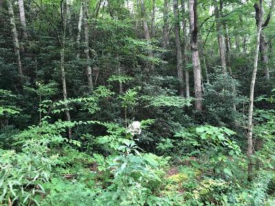 Buncombe County Residential Lots & Land For Sale: 12 Hunting Lodge Drive #2 &