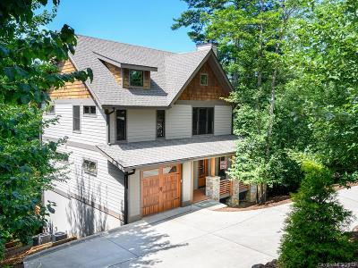Asheville Single Family Home For Sale: 61 Bassett Road