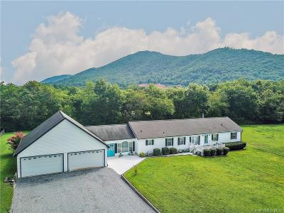 Buncombe County Single Family Home For Sale: 538 Cane Creek Road