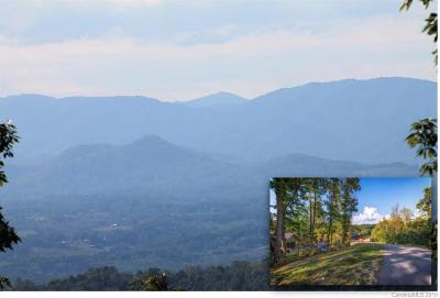 Buncombe County Residential Lots & Land For Sale: 69 Villa Nova Drive