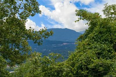 Buncombe County Residential Lots & Land For Sale: 99999 Spivey Mountain Road #13