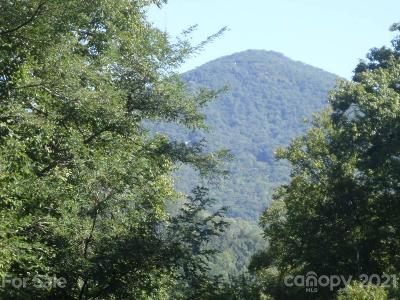 Haywood County Residential Lots & Land For Sale: 63 Jonathan Trail #63 and a