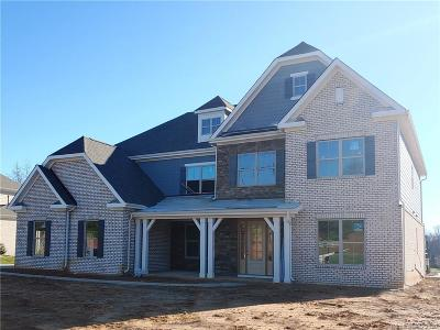 Waxhaw Single Family Home For Sale: 105 Downton Abbey Drive #24